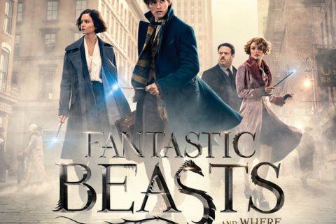 映画ファンタスティック・ビーストと魔法使いの旅のあらすじと感想をレビュー