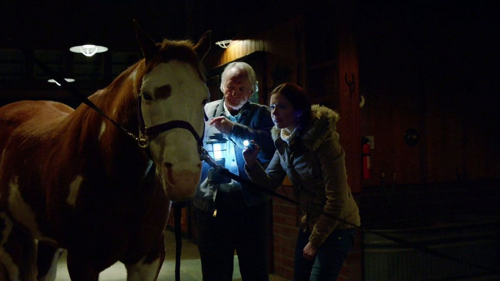 121-Juliette_examines_horse