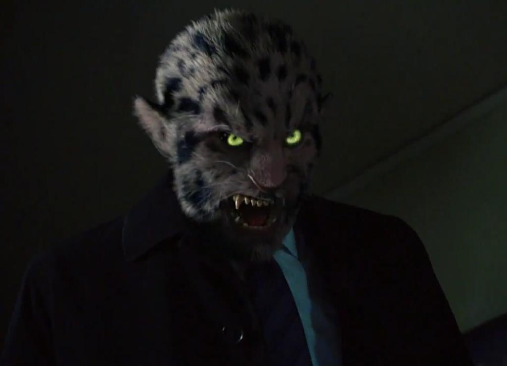 306-Leopard_Wesen
