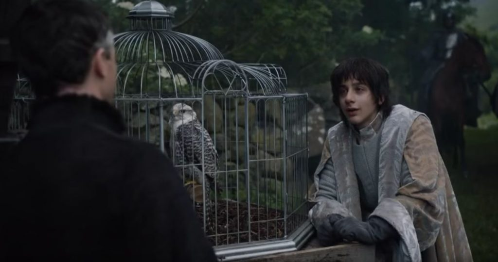 got-robin-and-his-gift-bird-from-littlefinger